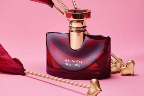 Fidalga Perfumaria  Ginga Shopping