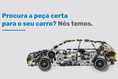 Caetano Parts Angola